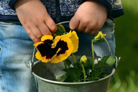 jardinage patouille